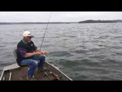 Perch Fishing with Memories and Tips about Lake Monticello - (More info on: https://1-W-W.COM/fishing/perch-fishing-with-memories-and-tips-about-lake-monticello/)