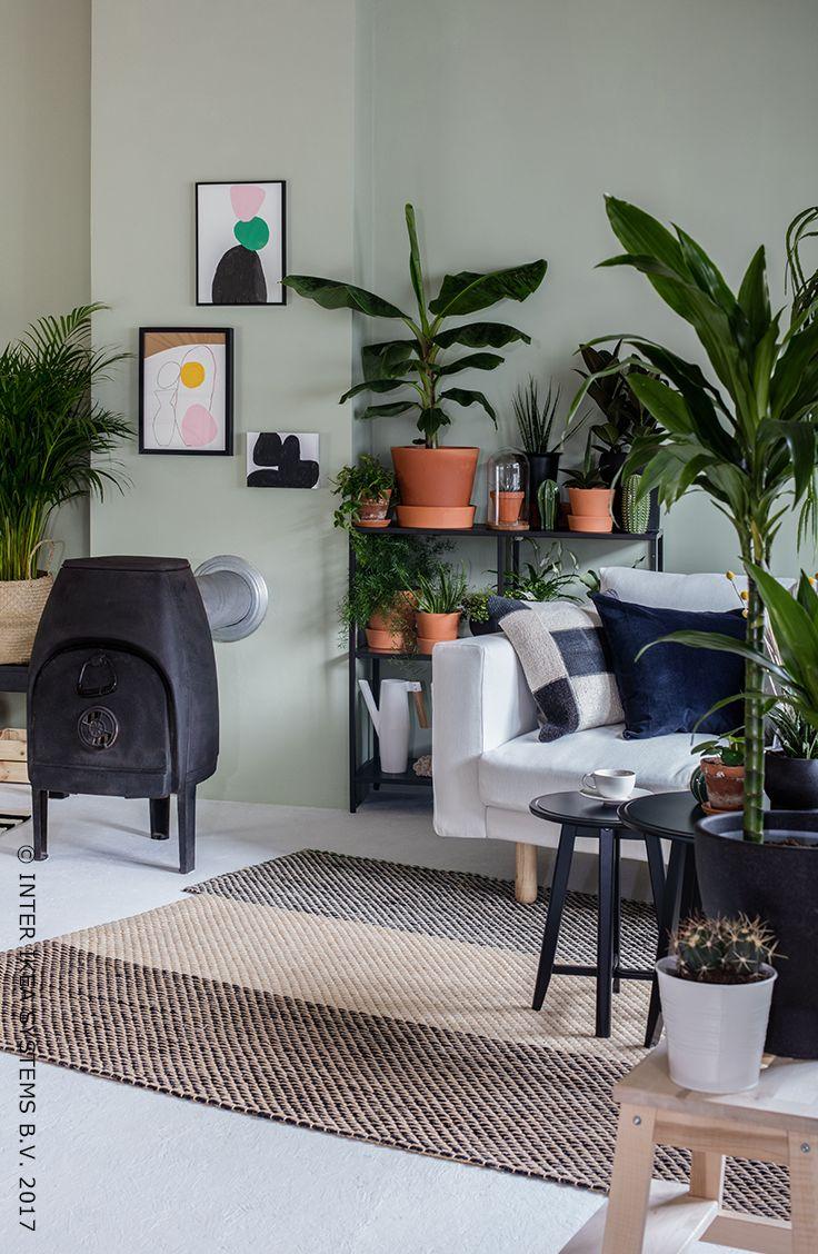 Haal meer groen in je interieur! Vul je kamers van de vloer tot aan het plafond met groen en creëer een indoor jungle! Ga creatief aan de slag en plaats de planten op strategische plekken, zo knap je meteen ook het hele huis op! CHRYSALIDOCARPUS LUTESCENS Potplant, 9,99/st. #IKEAxCoffeeklatch #IKEAidee Bring more green into your home! Fill your rooms from floor to ceiling with plants and create your very own indoor jungle! #IKEAxCoffeeklatch #IKEAidea