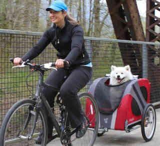 Remolques Bici para Perros: Carros Bicicleta Para Perros puedes Comprar en Amazon al mejor Precio y Calidad...GARANTIZADO! Bicicletas para llevar perros: En estos últimos años el trailer remolques bicicleta para los perros es una opción de transporte válida para nuestra querida mascota compañera en nuestras travesias de paseanderas. Consigue los mejores Accesorios para tu perrito en tiendas Amazon online al mejor precio!
