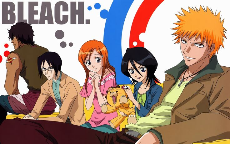 This anime is having many characters in the anime but only Kuchiki Rukia and Ichigo Kurosaki are the two important characters of this anime.