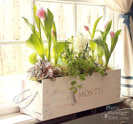 Indoor Garden Box best 20+ indoor window boxes ideas on pinterest | indoor herbs