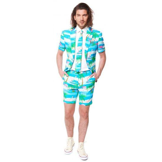 Flamingo zomer kostuum inclusief stropdas. Dit gave Flamingo kostuum voor heren wordt geleverd met een stropdas in dezelfde kleur. Getailleerd heren colbert met korte mouwen en korte pantalon. Materiaal: 100% hoogwaardig polyester. Exclusief overhemd.