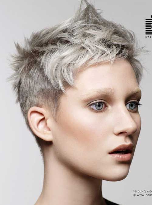 Super Short Hairstyles 291 Best Platinum And Grey Images On Pinterest  Grey Hair Going