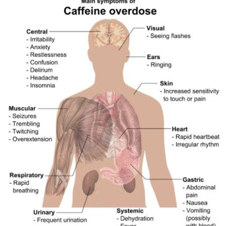 If you are a coffee drinker, you undoubtedly have asked for yourself simply how much coffee can be safely consumed every single day. Hardly a big surprise since so much has been blamed on coffee. C…