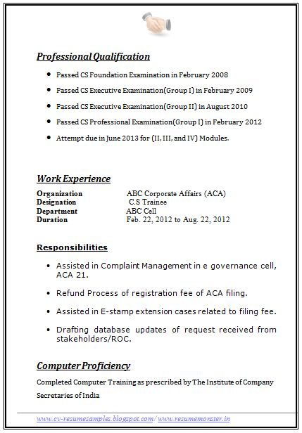 resume format example page