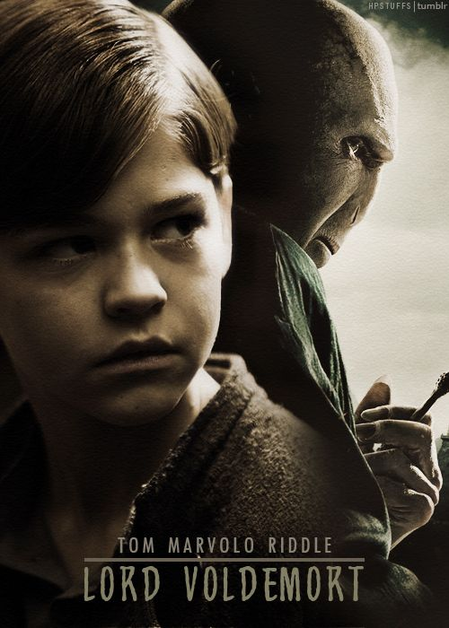"""I can speak to snake too, is that normal for someone like me?"" - Tom riddle to Dumbledore."