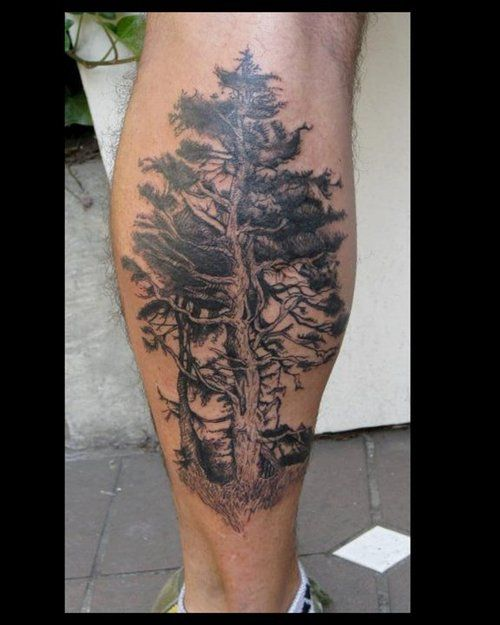 25 best images about pnw tattoo on pinterest trees pine tattoo and north shore. Black Bedroom Furniture Sets. Home Design Ideas