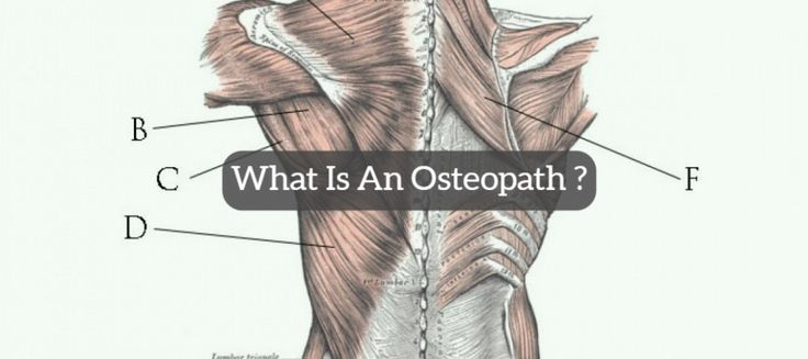 Ever wondered what an Osteopath actually is? Eddie Clark from Sydney Health Professionals explains all. #osteopath #wellness #health #sportsinjury #fitness #naturalhealth #naturalmedicine