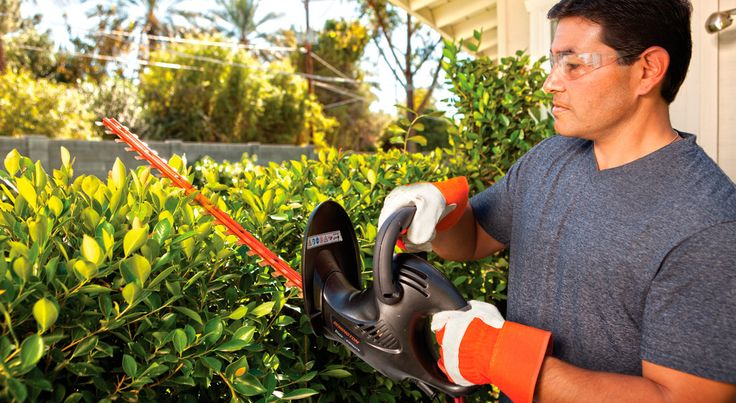 Learn the basics of tree trimming and pruning with simple tips and information about tree trimming tools and equipment.