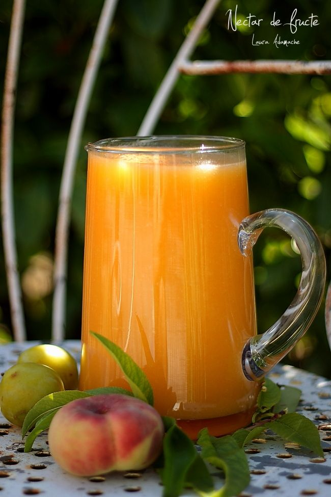Nectar de fructe - www.lauraadamache.ro