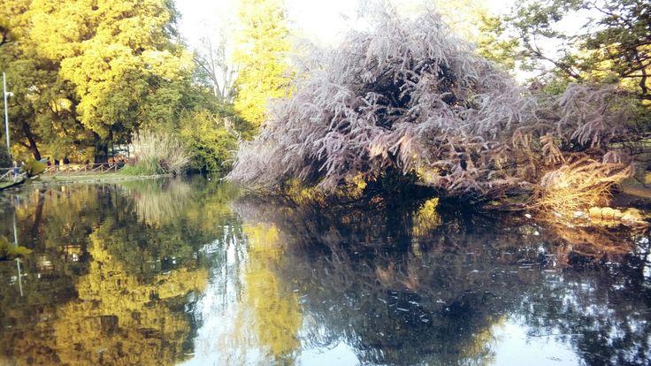 Magic. Parco Sempione. Milan.  Wonders of nature. Perfect landscape