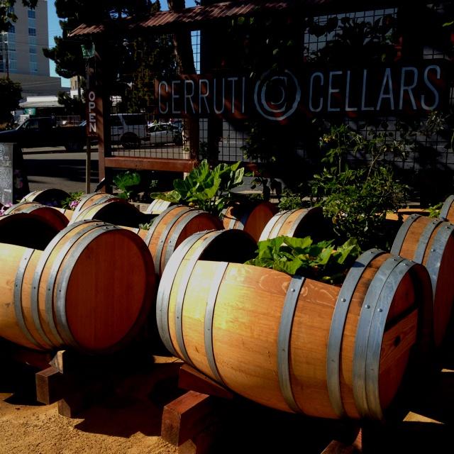 Cool planter idea using wine barrels sideways green for Diy wine barrel planter