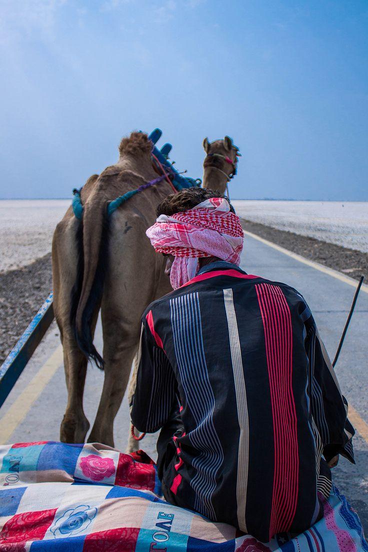 kutch, gujarat, people, india, photography, rhea gupte, FUSS, village, kutch, rann of kutch, camel, stripes, man, turban