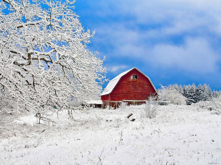 Вашингтон, деревенский домик, Америка, белое, зима, пейзажи, природа 1600х1200