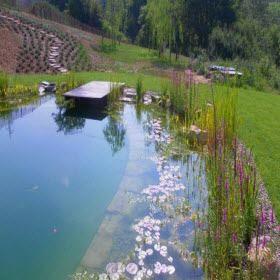 Un sogno, vero?  E' una #biopiscina: si autopulisce con le piante ed i fiori che ci vivono. Anche l'Università di Siena ha confermato: le piante giuste ripuliscono l'acqua da elementi inquinanti in 90 h. E tu nuoti tra le ninfe nell'acqua blu. Scopri di più qui: http://blog.viaggiverdi.it/2014/09/piscine-naturali-biolaghi/