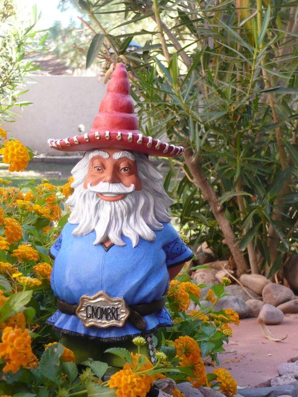 Gnombre, the lovable Hispanic garden gnome: on KickStarter: www.kickstarter.c...