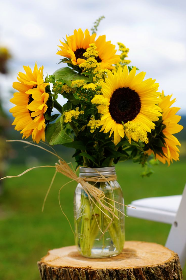 Natural vineyard wedding with sunflowers discover best