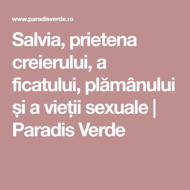 Salvia, prietena creierului, a ficatului, plămânului și a vieții sexuale | Paradis Verde