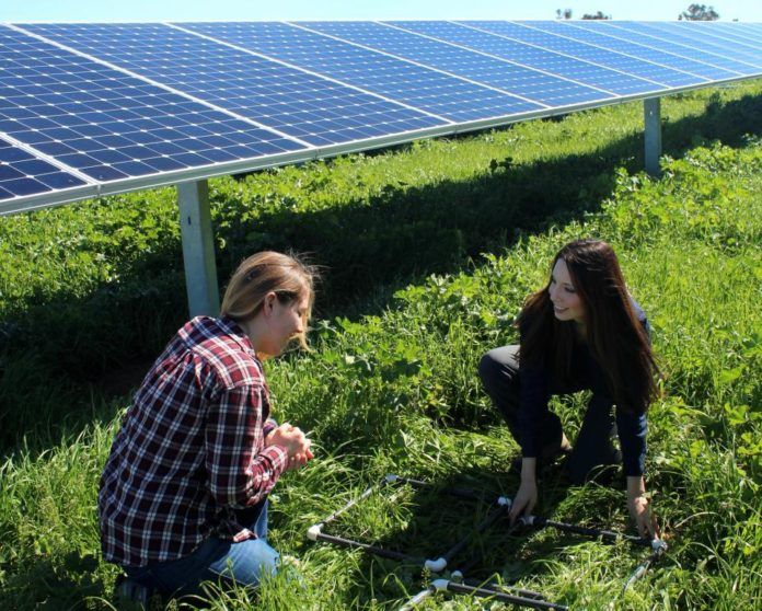 #CASTCatchoftheDay: This study shows how unconventional spaces could be put to use to generate renewable energy while sparing lands that could be better used to grow food. #SolarPower #SolarEnergy #LandConservation #RenewableEnergy