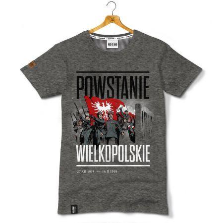 Powstanie Wielkopolskie - Kolekcja Unikalna; GreatPoland  Insurgency 1918;