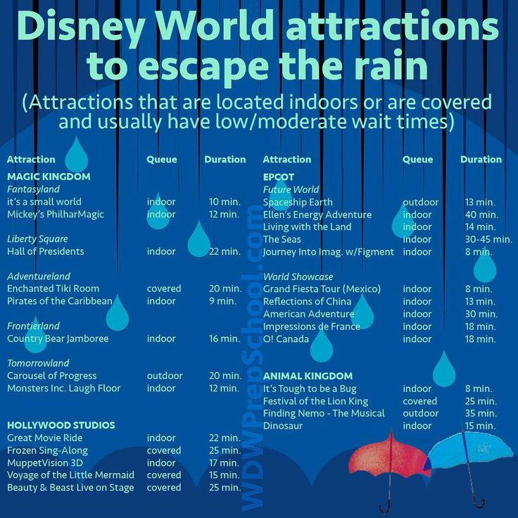 New post! How to deal with the rain, heat, and humidity on your Disney World trip (link in bio)