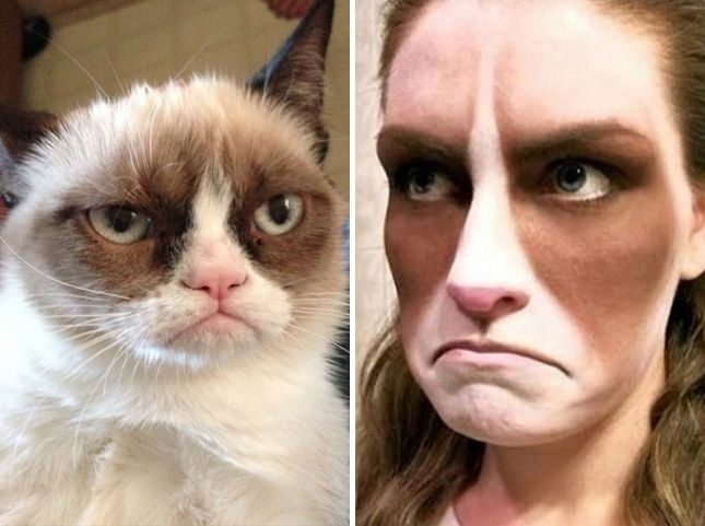 This grumpy cat costume is hilarious.
