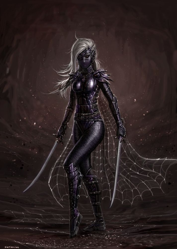 Dark Elf Assassin by SirTiefling.deviantart.com on @DeviantArt