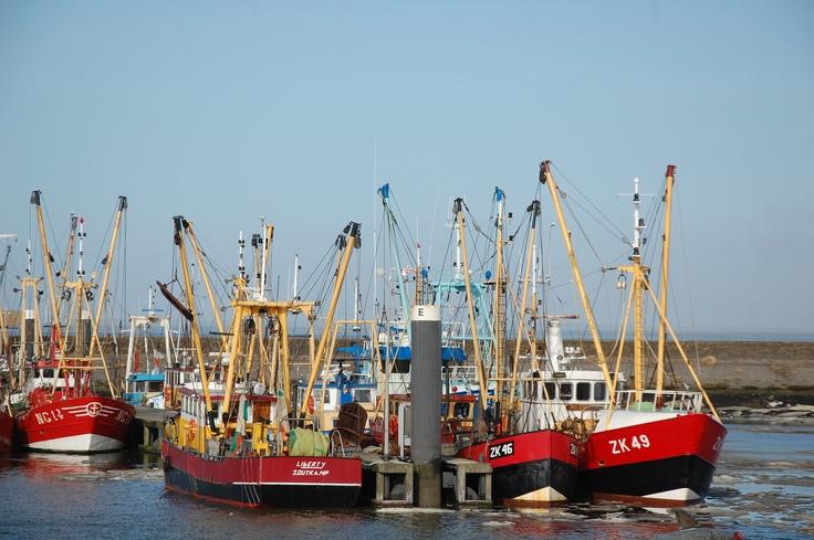 Vissersboten bij Lauwersoog. Foto: Marco in 't Veldt