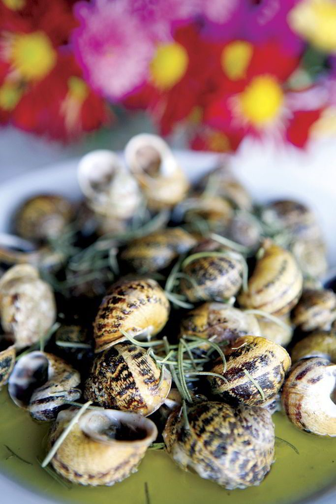 """Typical snails recipe: Snails """"Savoro"""" with rosemary"""