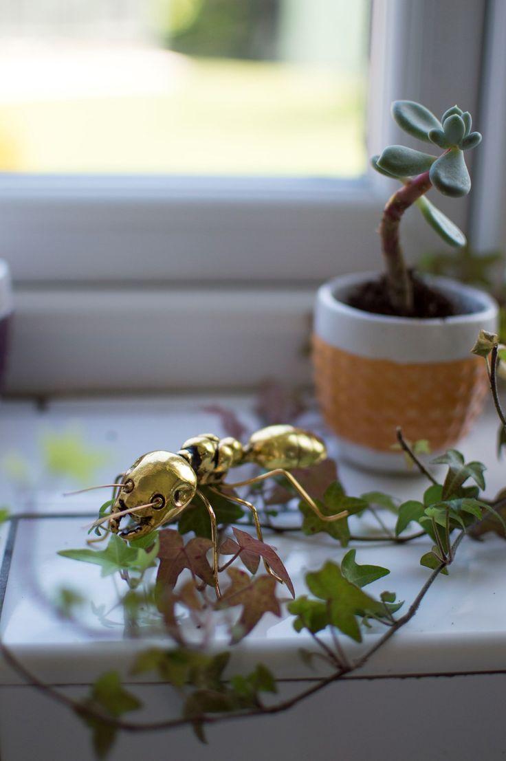 Kitchen Tour - gold ant ornament