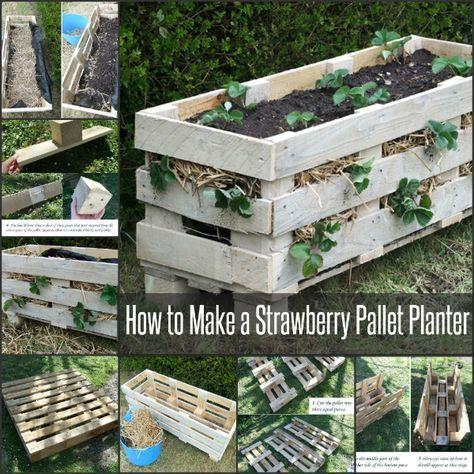 how to make a strawberry planter