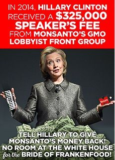 We can't afford to have another candidate in the White House who intentionally puts Monsanto's profits over the rights of the American public. -- Demand Hillary Divorce Monsanto's Lobbyists Now! -- Food Democracy Now -- 2-1-16