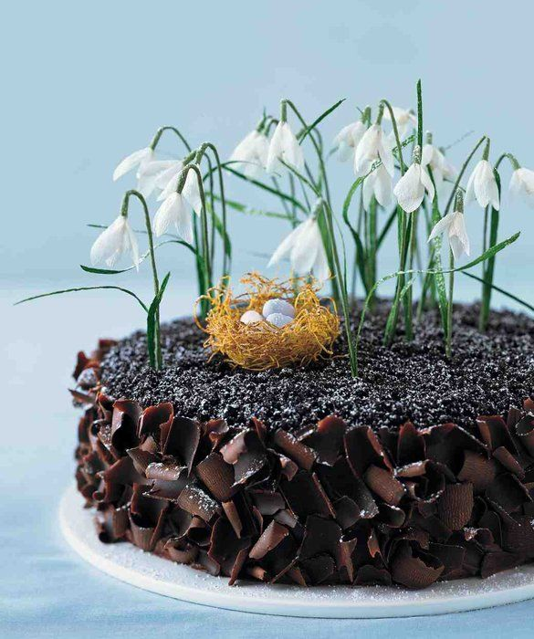 Celebrate in style with a nature-inspired Easter cake.