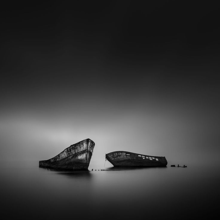 Two old friends (re-edition) by Emmanuel LE GUELLEC