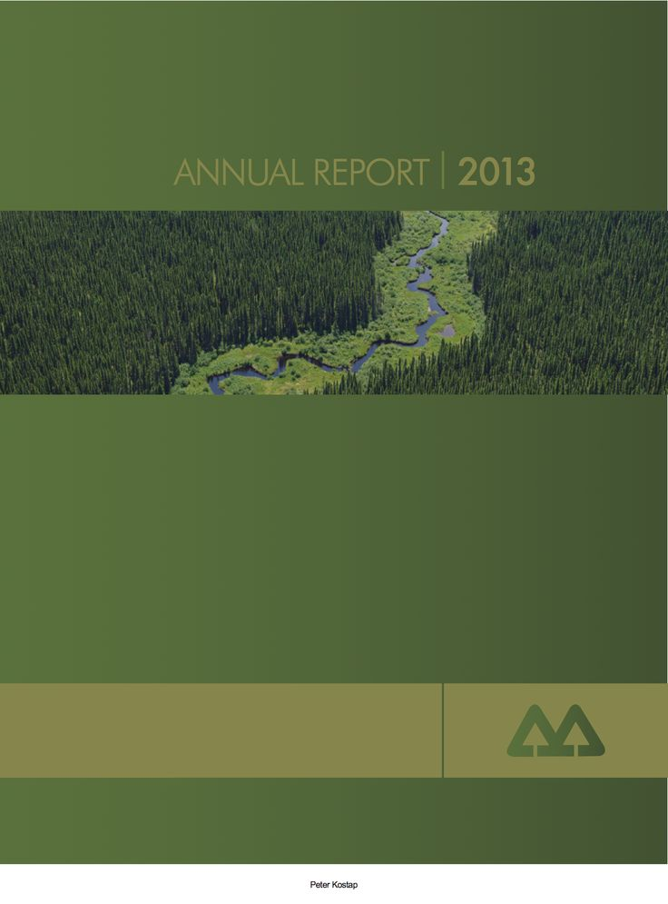 Annual Report cover InDesign project. Version 2