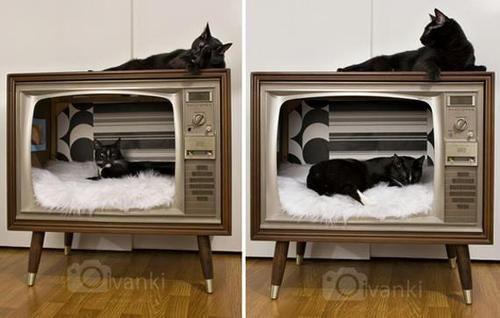 vintage tv cat boxes - det vil jeg prøve, når mit gamle Lg-tv ikke kan mere. Kattene kan i forvejen godt lide at ligge på det, og stikke poterne i VHS klappen :0)