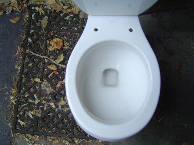 Details About Bowl Only Kohler Toilet Bowl K4558 K4519 Commode