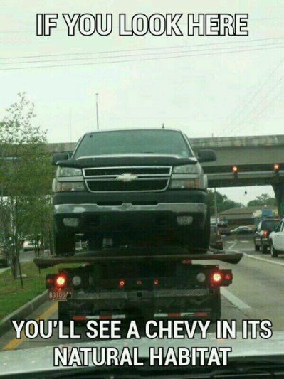 Chevy Jokes                                                       …