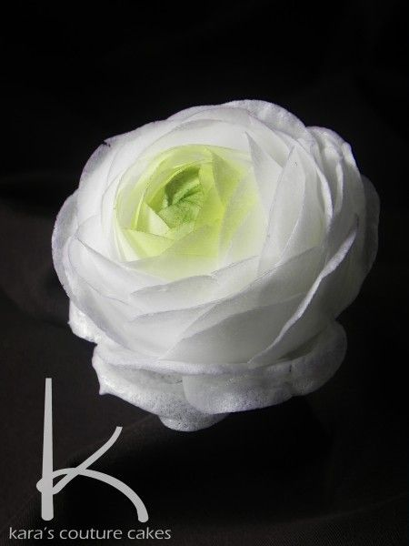 Wafer Paper Ranunculus tutorial - SugarEd Productions