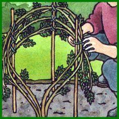 Rosenpflege hält die Rosen kräftig und attraktiv.  Wer Rosen gesund, kräftig und schön halten will, muß im Winter mit Gartenschere und anderem Werkzeug schon ein wenig Rosenpflege betreiben  http://www.gartenschlumpf.de/rosen-pflege/