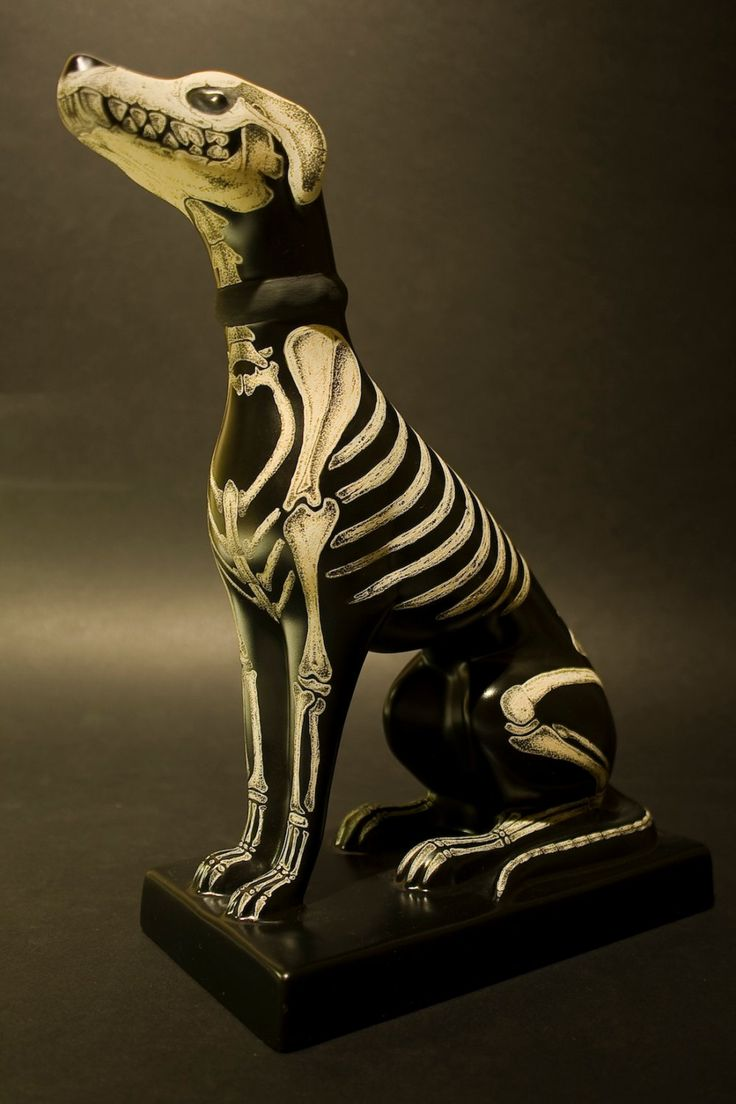 Ceramic dog skeleton - very Day of the Dead - skull item