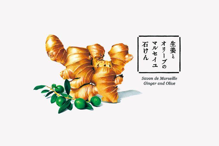 syouga-logo1.jpg (1280×853)