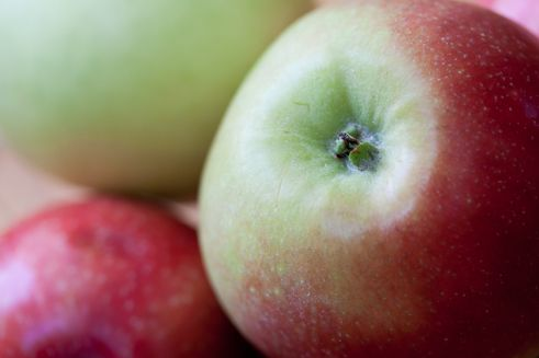 Poland – the third largest producer of apples in the world