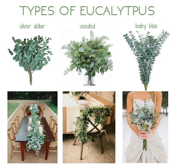 Check out these ideas to include eucalyptus in your wedding! – wedding flowers, ceremony, centerpieces