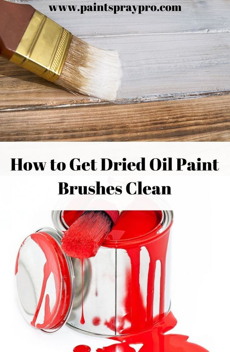 3 Ways On How To Clean An Oil Paint Brush Without Paint Thinner With Images Oil Paint Brushes Cleaning Oil Paint Brushes Paint Thinner