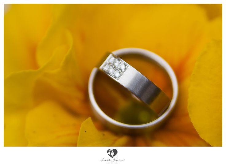 #ring #weddingring #wedding #hochzeit #groom #bride #braut #braeutigam #geschenk #present love #forever #fuerimmer #engagement #engagementring #verlobung #verlobungshooting #silver #gold #weddinghour #yellow #ringe