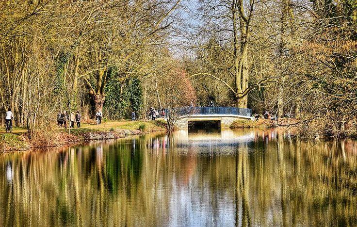 """Aquarelle naturelle"" Niort - France  #france  #travelgram #igersfrance #igersdeuxsevres #picoftheday #photoftheday  #jaimelafrance #niort #merveillesdefrance #topfrancephoto  #igersniort #reflection #nouvelleaquitaine  #deuxsevres #nature #laroussille #naturelovers #reflet #puddlelovers #unlimitedfrance #nelleaquitaine_focus_on #france_focus_on #so_photo #maraispoitevin"