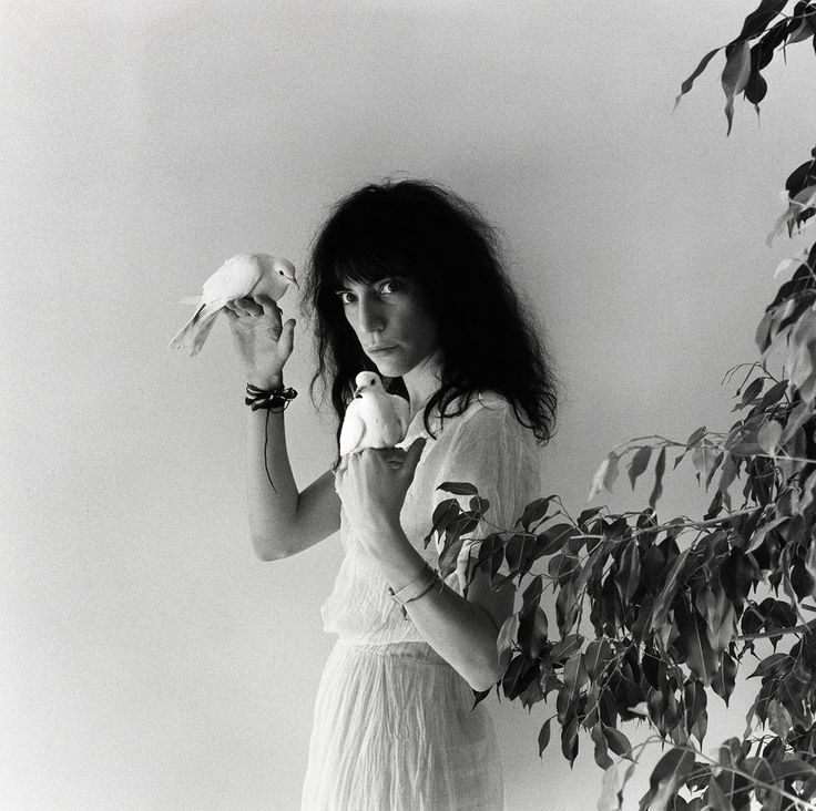 Robert Mapplethorpe - Patti Smith, 1979  patti the white queen...holder of doves ululating ragged voice....sew me to your soul