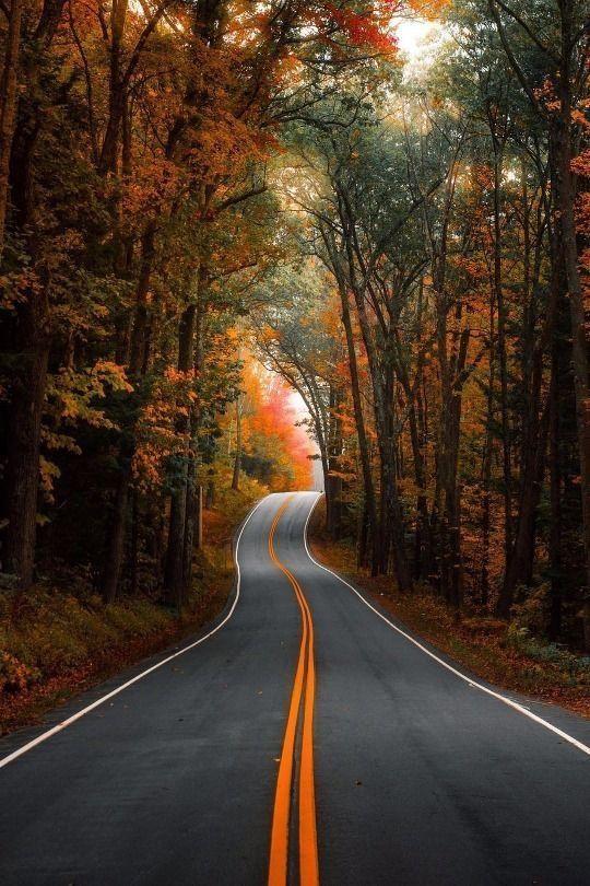 Pin de Bryan Morales em Autos (com imagens) | Imagens natureza ...