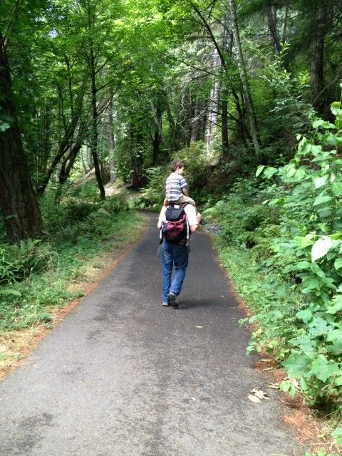 Kid Friendly Hikes Olympia